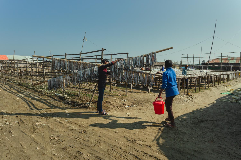 Transporting rods of fish at Dhaka - Bangladesh Dried Fish Village.