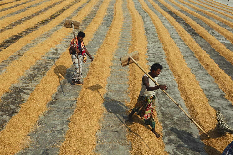 Smiling workers strolling to work at Dhaka, Bangladesh Rice Mills.