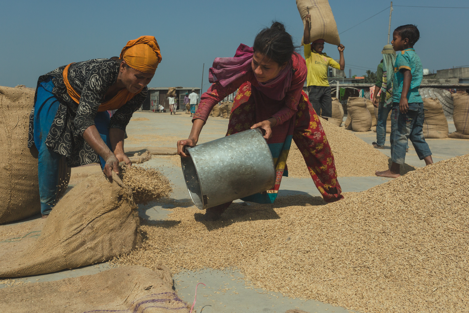 Women filling hessian bags with rice at Dhaka, Bangladesh Dhaka, Bangladesh Rice Mills.